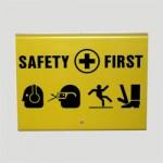 TSS-SAFETY